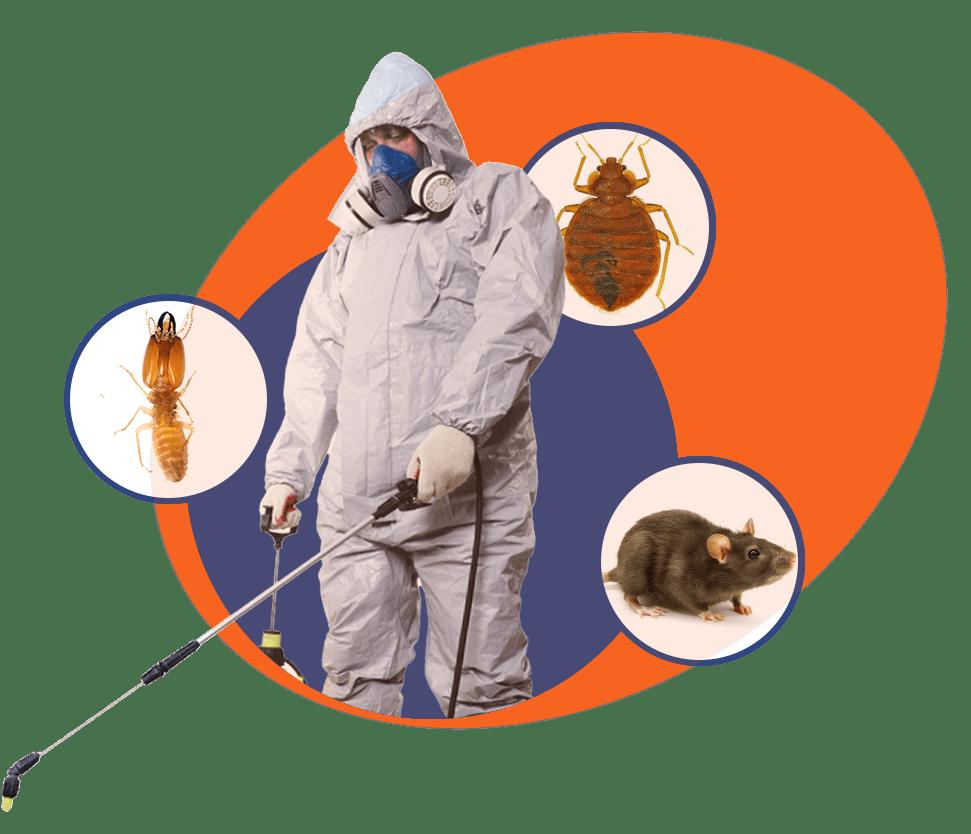 Pest Control Hero Photo