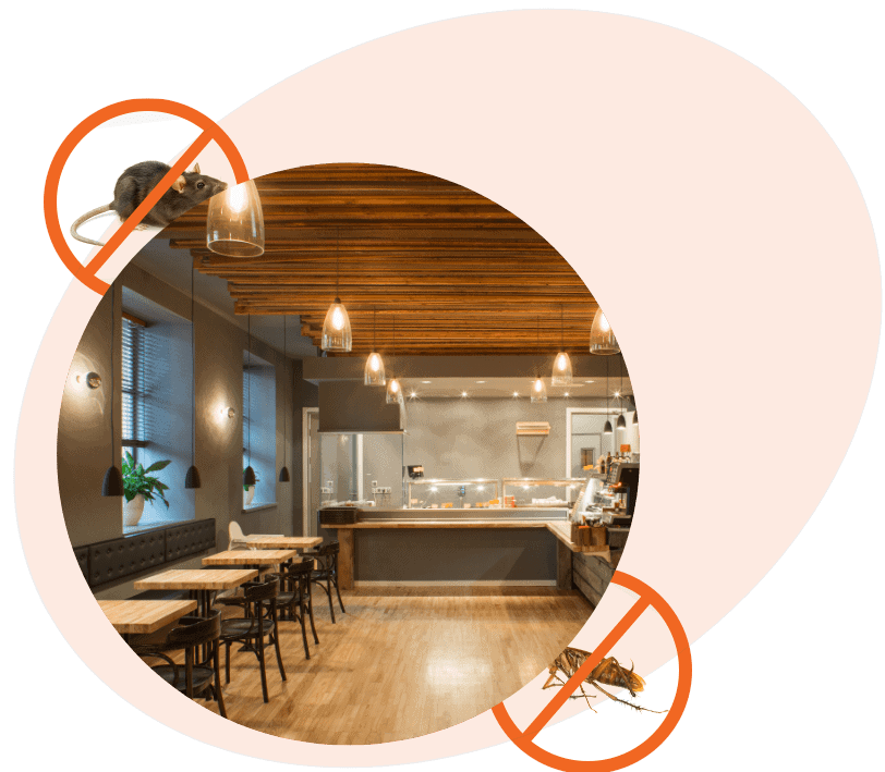 Restaurant Pest Control Photo